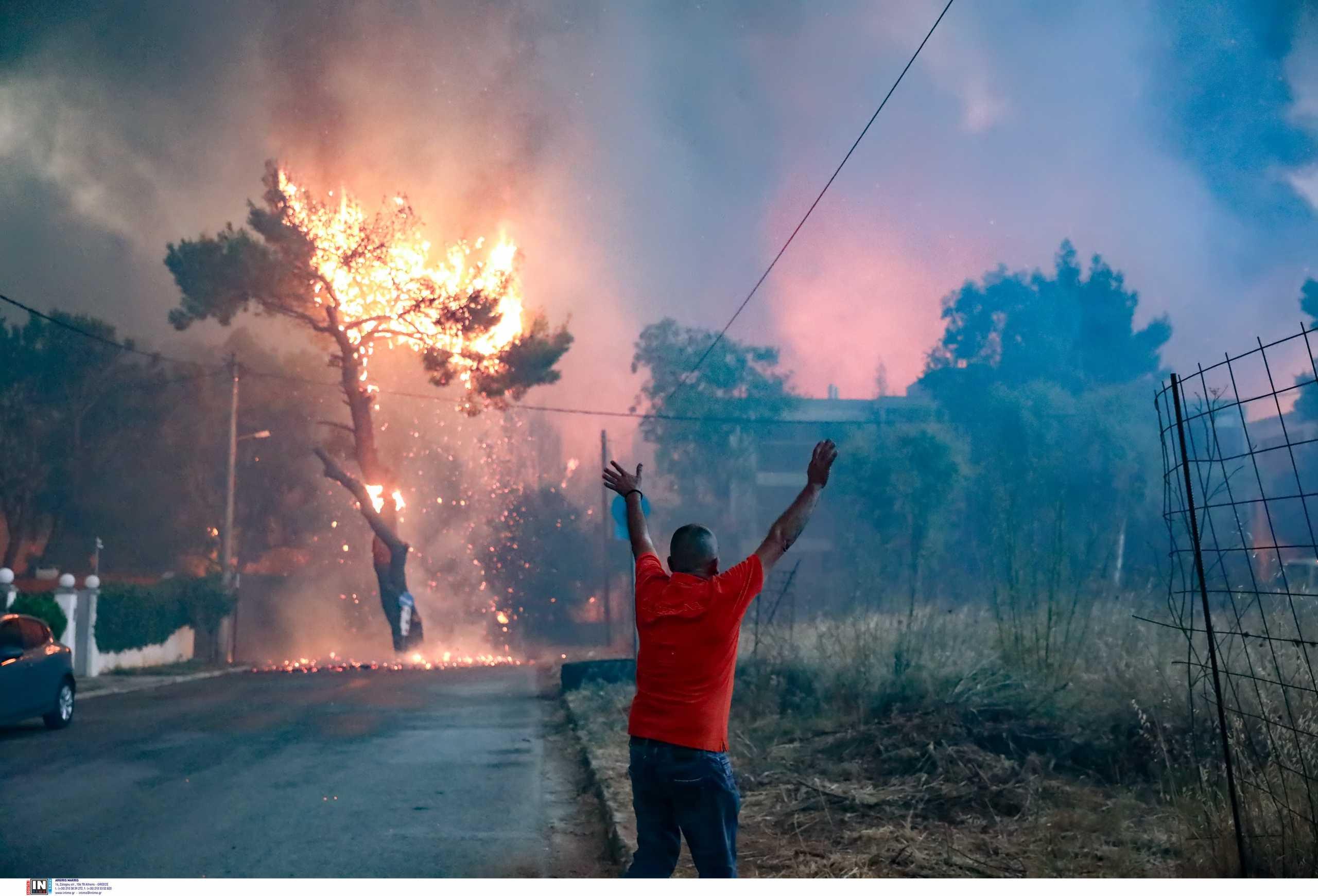 Η φωτιά στην Αττική είναι απόρροια του ακραίου καύσωνα λέει καθηγητής του ΑΠΘ