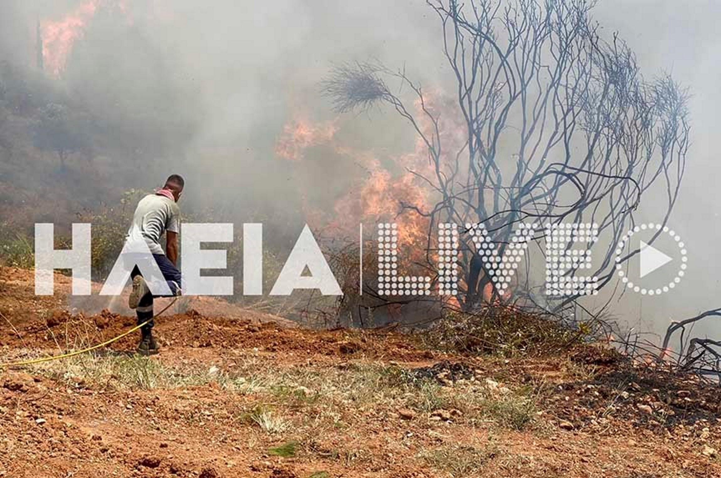 Φωτιά στην Ηλεία: Μεγάλη μάχη στη Νεμούτα – Πληροφορίες για εγκλωβισμένους στα Χάνια