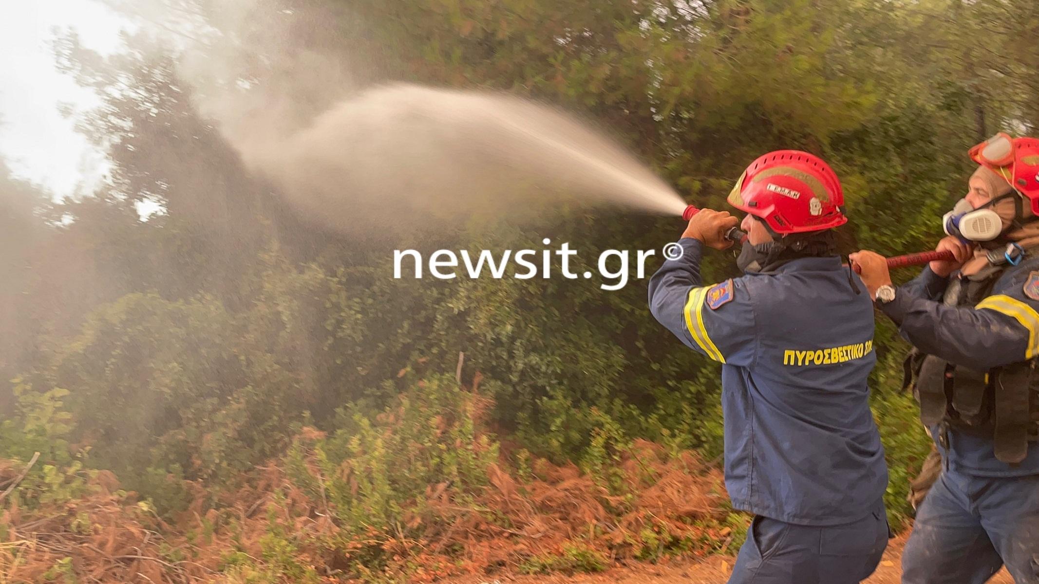 Φωτιά στην Εύβοια: Μάχη με τις αναζωπυρώσεις