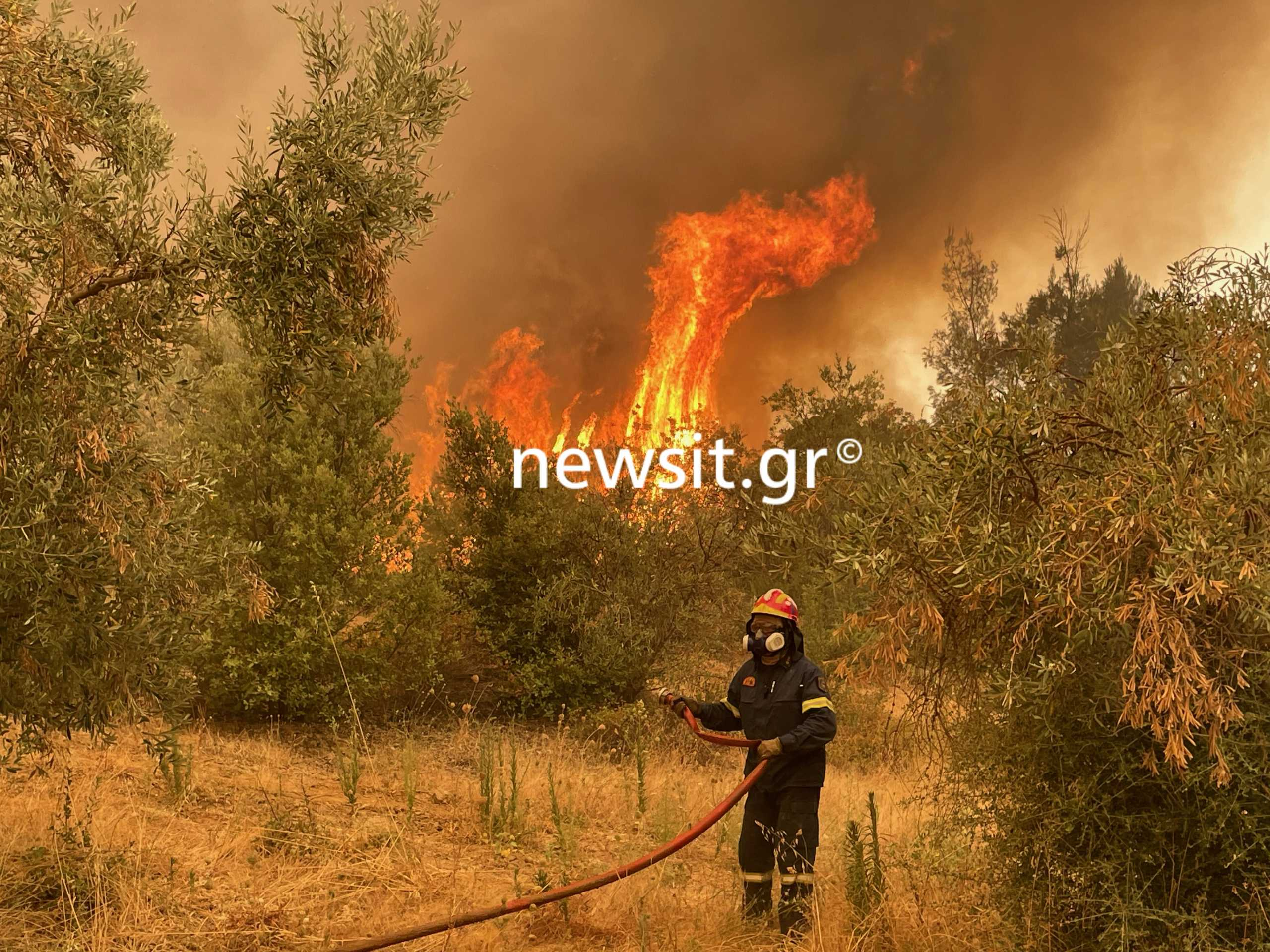 Φωτιά στην Εύβοια: Αναζωπύρωση στο χωριό Γερακιού – Απειλούνται οι Καματριάδες
