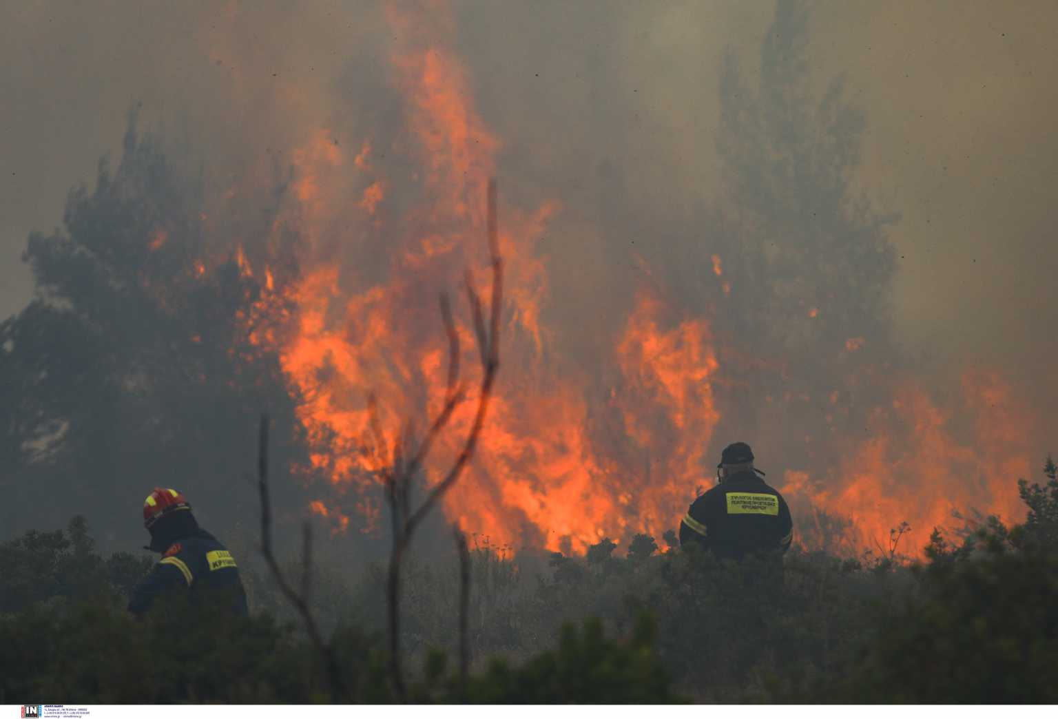 Φωτιά στην Ανατολική Μάνη: Στη δύσβατη περιοχή της Δεσφίνας το κύριο μέτωπο