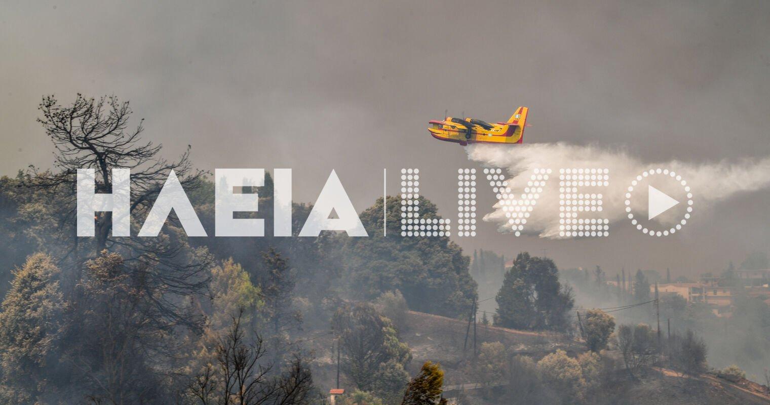 Φωτιά στην Ηλεία: Αναζωπυρώσεις στο πύρινο μέτωπο – Παραμένει η αγωνία για την Νεμούτα, δύσκολη κατάσταση στο Βασιλάκι