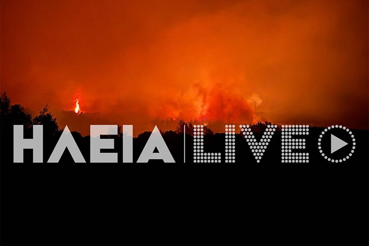 Φωτιά στην Ηλεία: Στην Αρκαδία οι φλόγες – Μεγάλο μέτωπο σε δάσος στην Νεμούτα