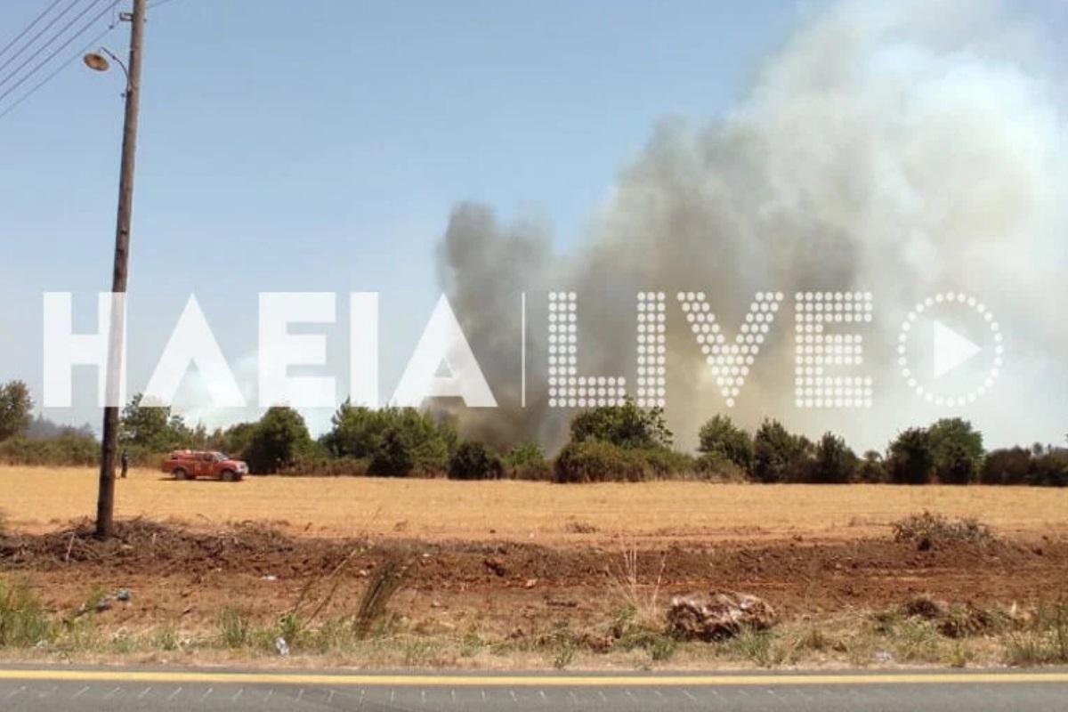 Φωτιά στην Ηλεία: Νέες αναζωπυρώσεις σε τρία μέτωπα