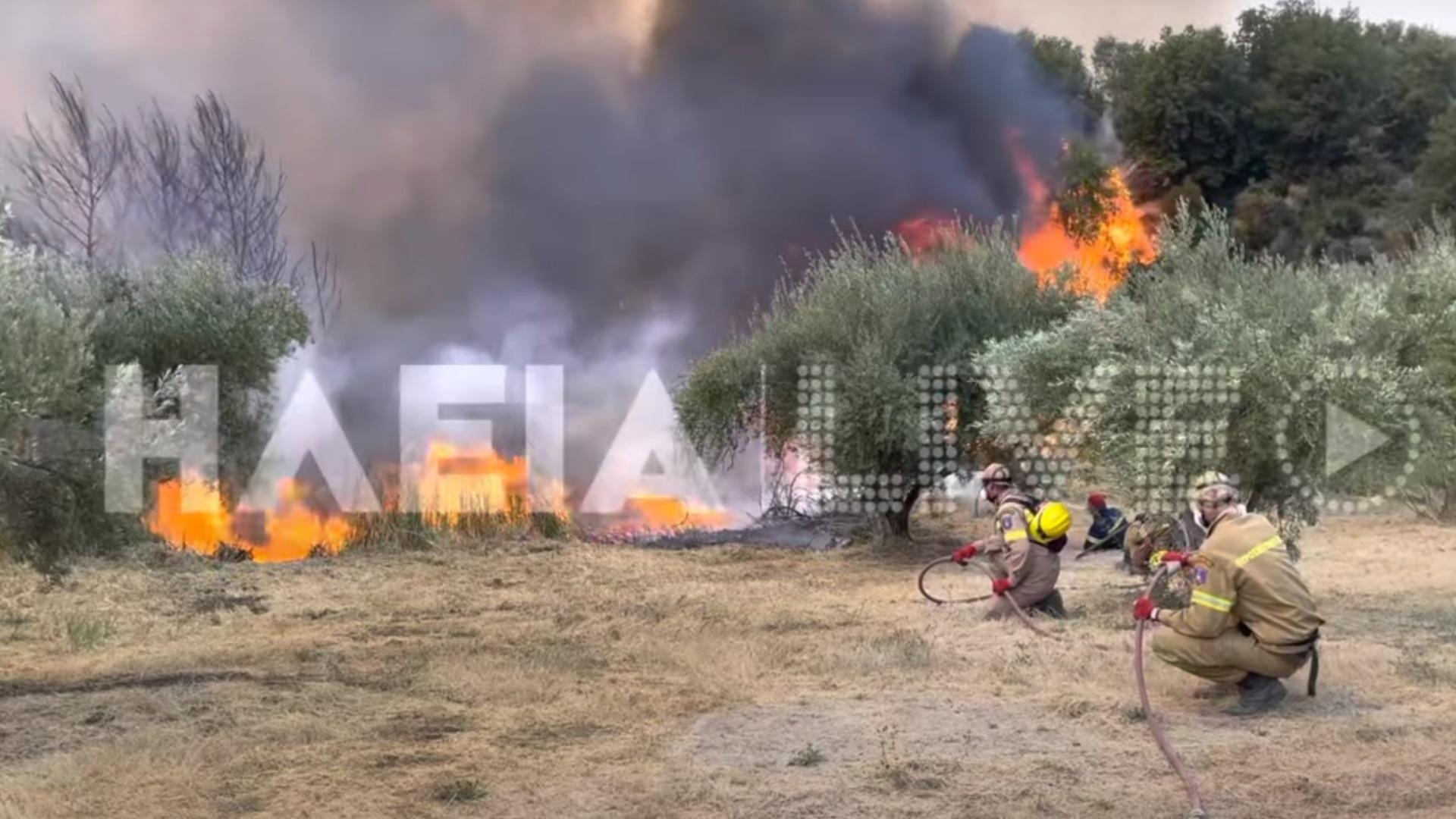 Ηλεία: Σιγοκαίει η φωτιά σε Δούκα και Λάσδικα – Αντιμετωπίστηκαν οι αναζωπυρώσεις