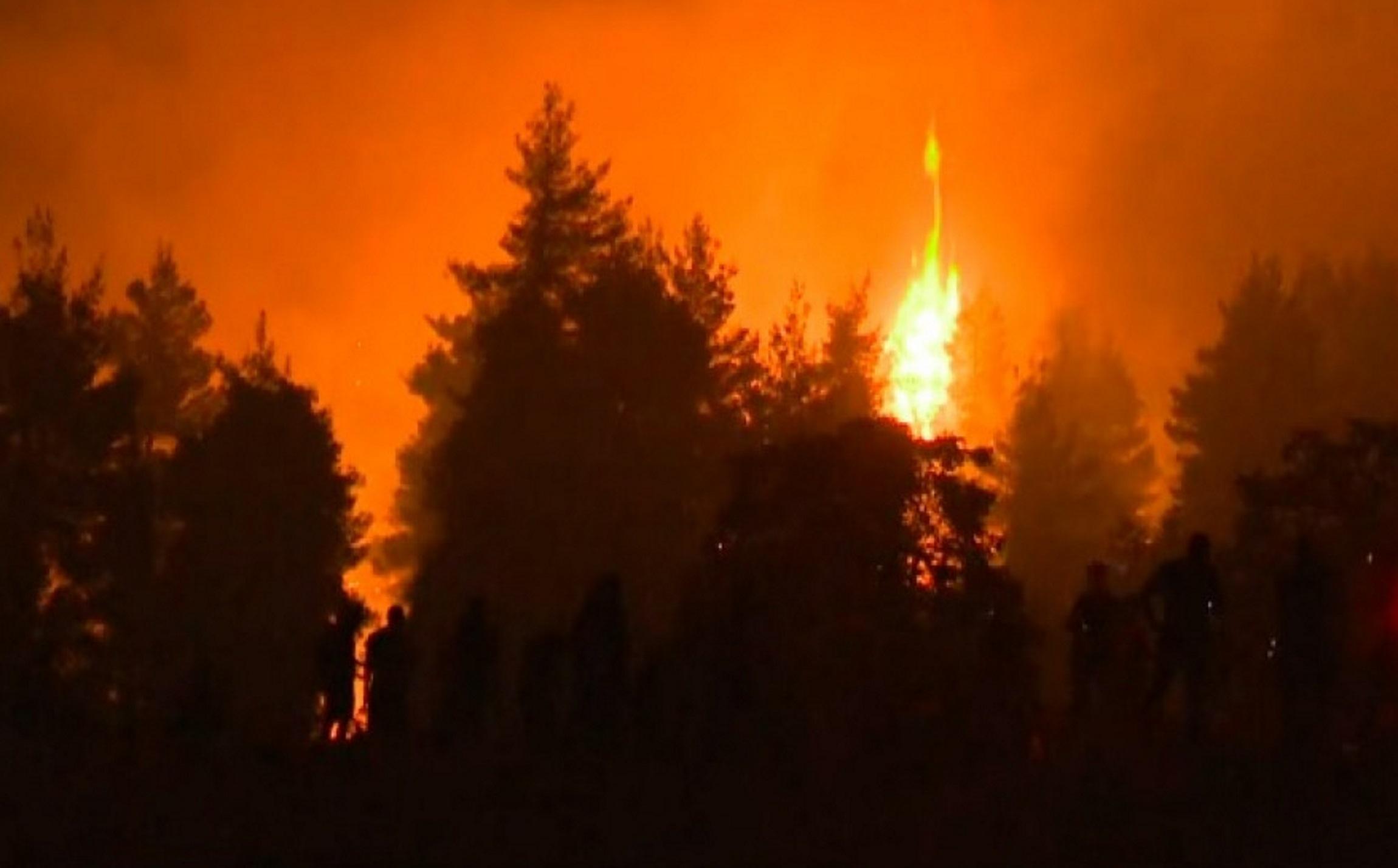 Φωτιά στην Εύβοια: «Εκκενώστε τώρα» – Νέο μήνυμα του 112 για την Αβγαριά