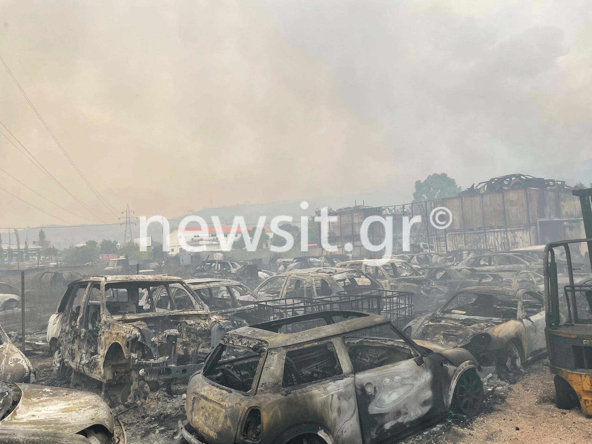 Φωτιά στην Αττική: Κάηκαν πάνω από 100 αυτοκίνητα στην μάντρα στις Αφίδνες