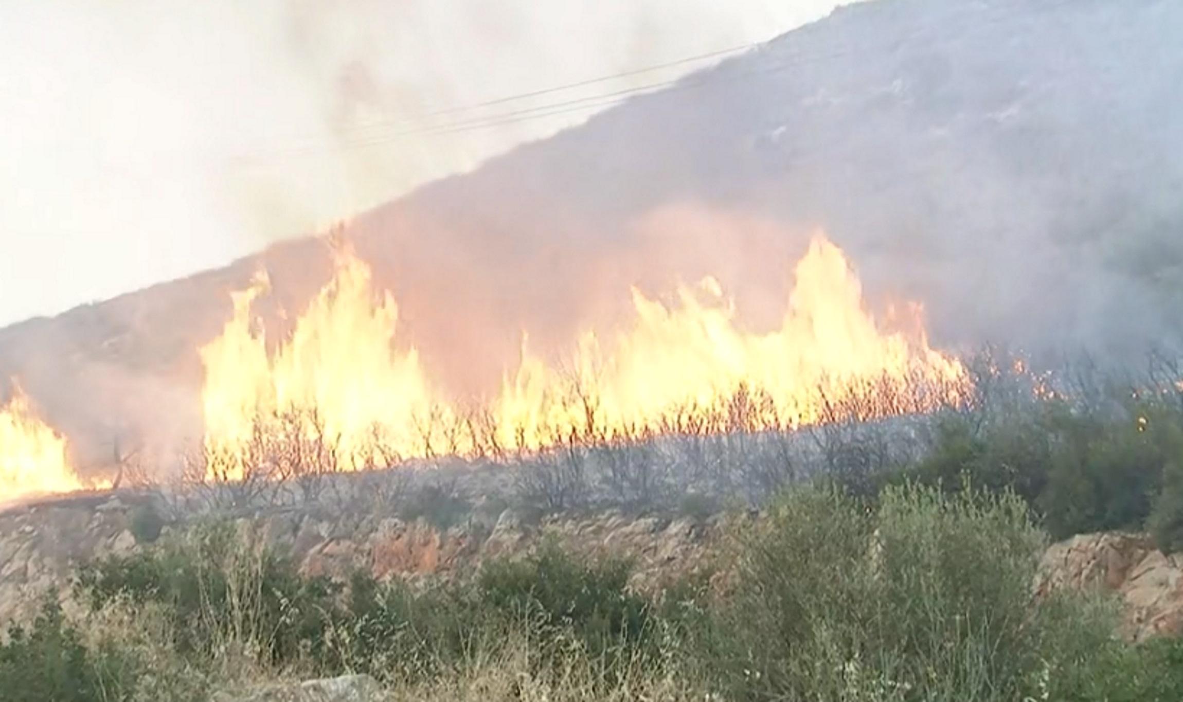 Μεγάλη φωτιά και στο Μαρτίνο Φθιώτιδας