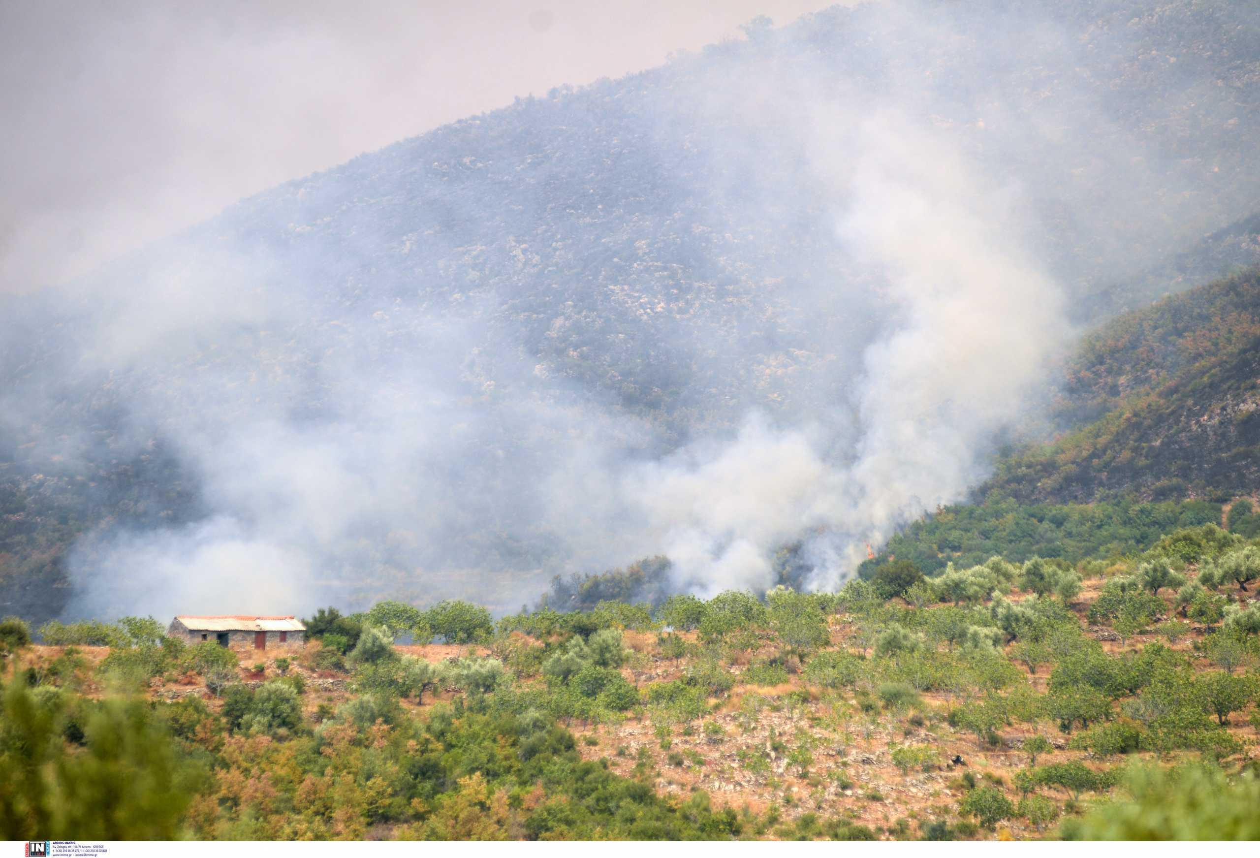 Φωτιά στην Μεσσηνία: Βελτιώνεται η κατάσταση