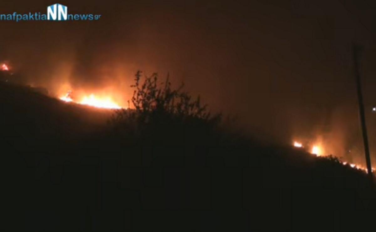 Πάνω από 8 χιλιόμετρα το μέτωπο της φωτιάς στη Φωκίδα – Εκκένωση και στον Τολοφώνα
