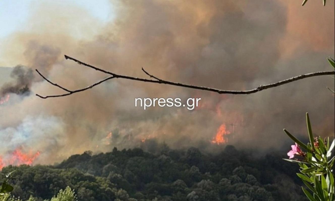Αγρίνιο: Τέθηκε υπό έλεγχο η φωτιά στο Παραδείσι