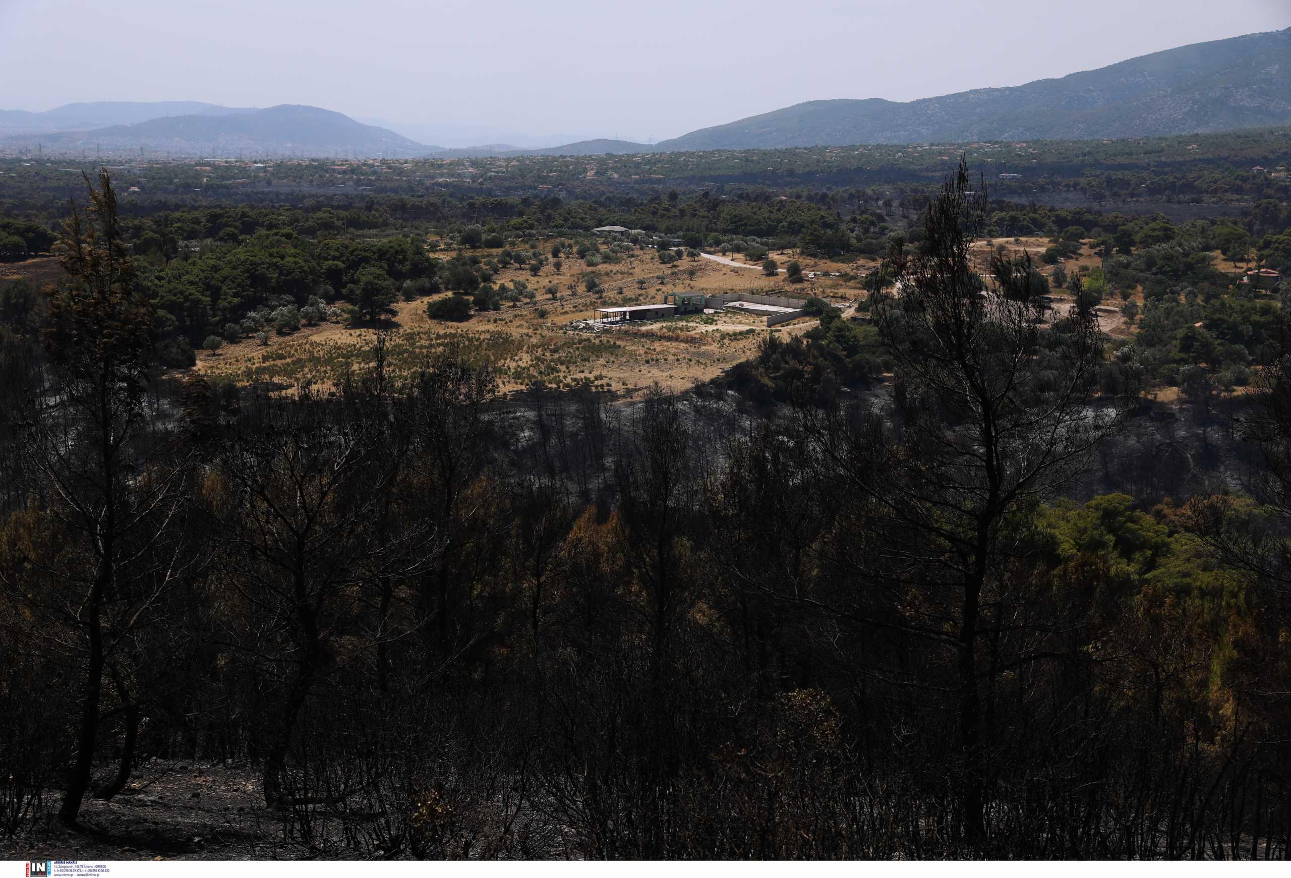 Φωτιά στην Αττική: Ενισχυμένο το μέτωπο στην Πάρνηθα – Στη μάχη Κύπριοι, Γάλλοι και Ισραηλινοί πυροσβέστες