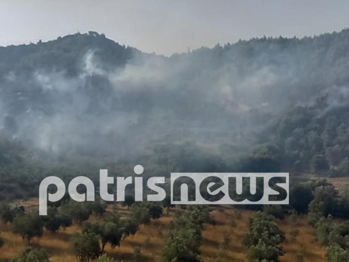 Φωτιά στην Αρχαία Ολυμπία: «Είναι ανεξέλεγκτη» λέει ο Δήμαρχος Πύργου – Δεν επιχειρούν τα αεροπλάνα