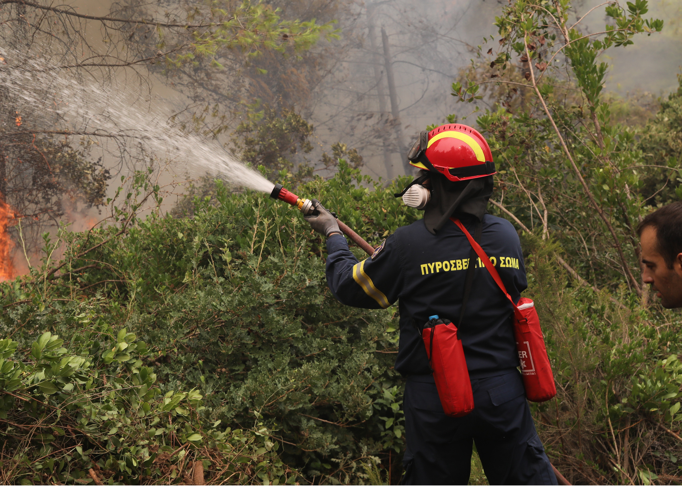 Φωτιά στην Αρκαδία: Στο νοσοκομείο πυροσβέστης με εγκαύματα – Άλλοι δύο παρουσίασαν αναπνευστικά προβλήματα