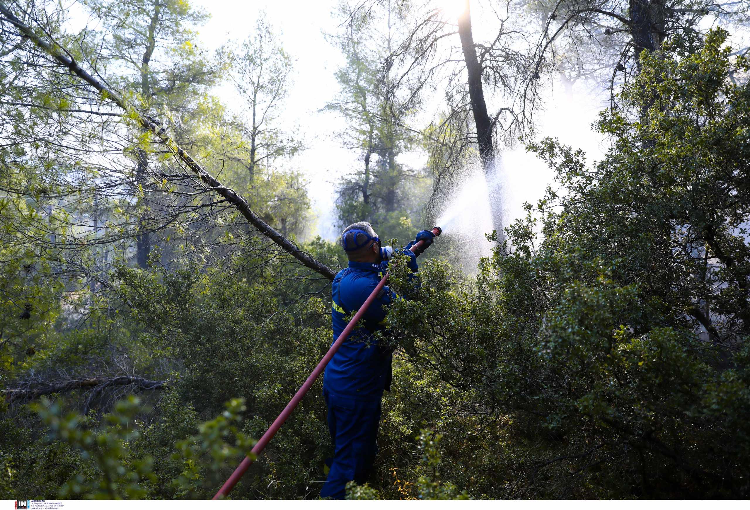 Σε κατάσταση συναγερμού Εύβοια και Αττική για ακραίο κίνδυνο πυρκαγιάς