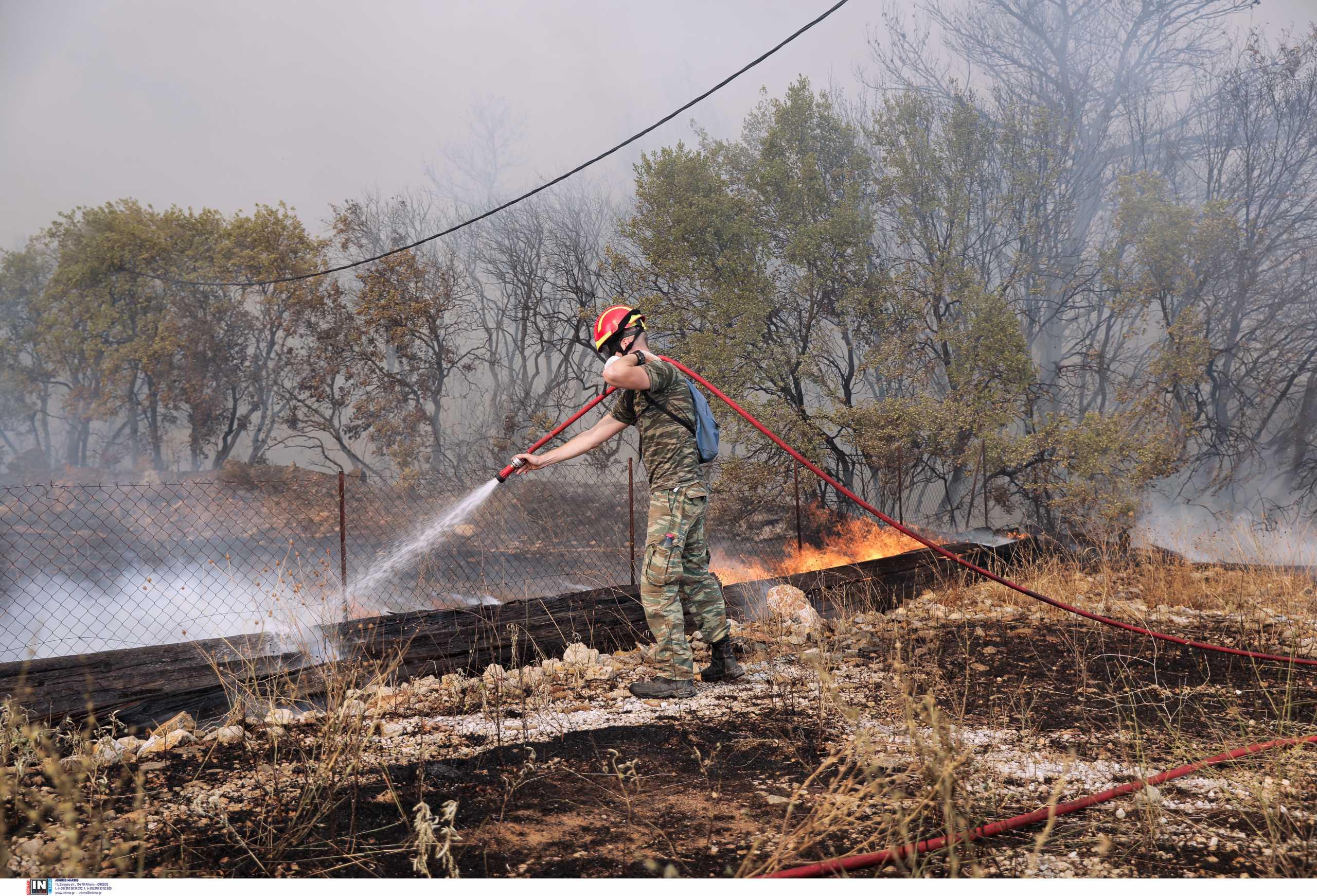 Ξάνθη: Υπό έλεγχο η φωτιά στο Ωραίο – Έγκαιρη η επέμβαση των πυροσβεστικών δυνάμεων