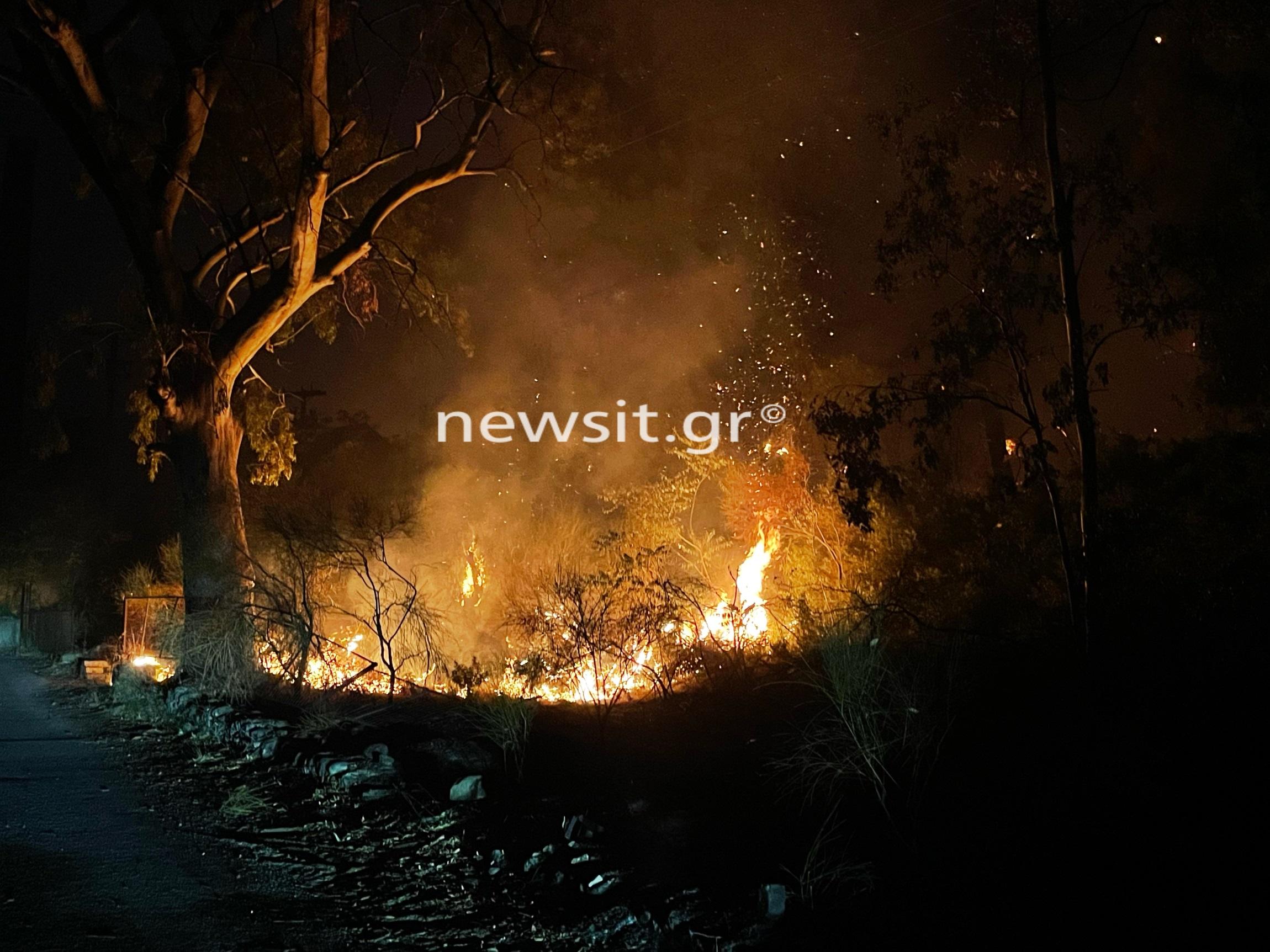 Φωτιά στην Εύβοια: Νέο μέτωπο στην Δάφνη, κοντά στις Ροβιές – Κρίσιμες στιγμές σε άλλες 4 περιοχές