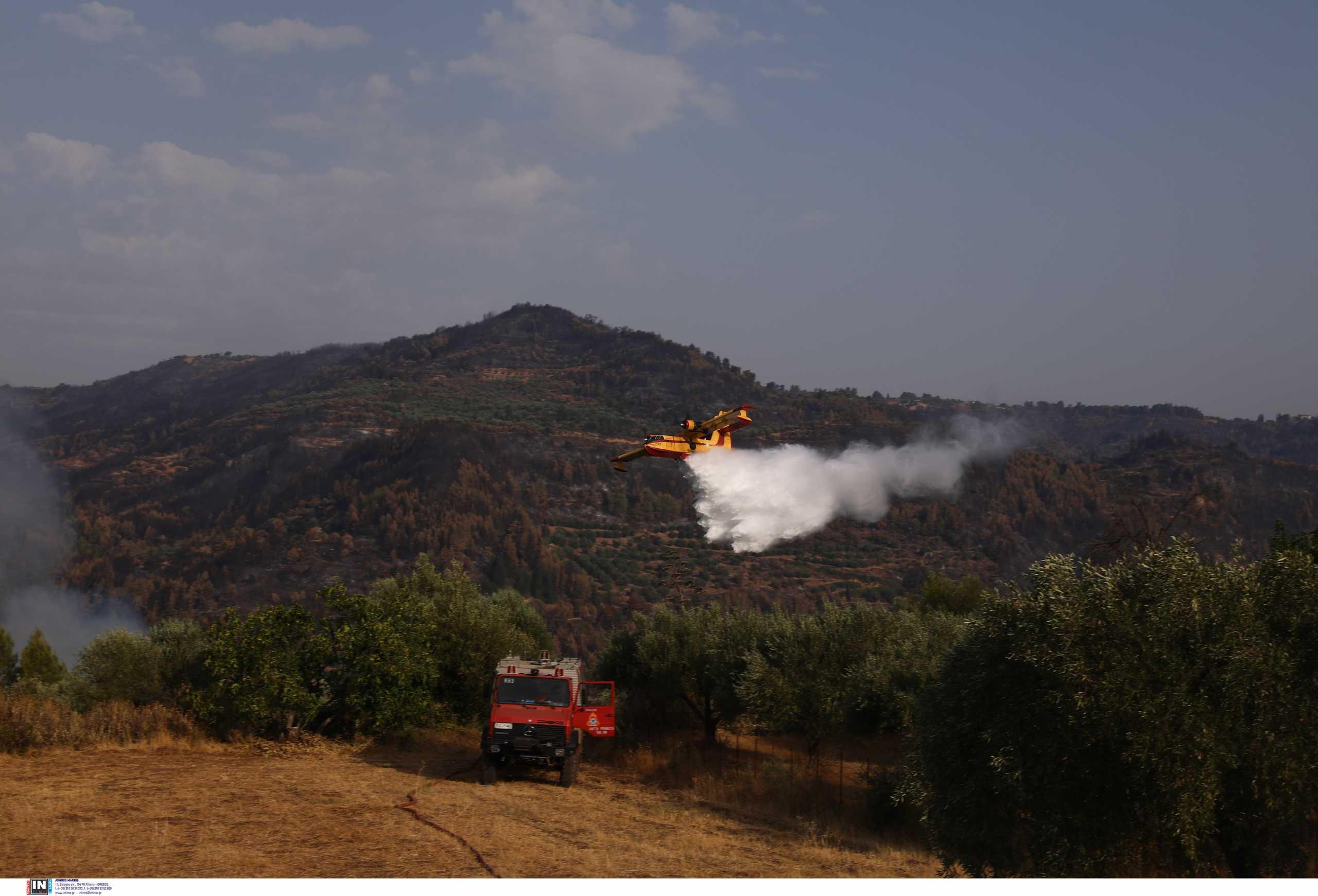 Φωτιά στην περιοχή Δρυάλια Λακωνίας – Πάλευαν από γη και αέρα για την κατάσβεση