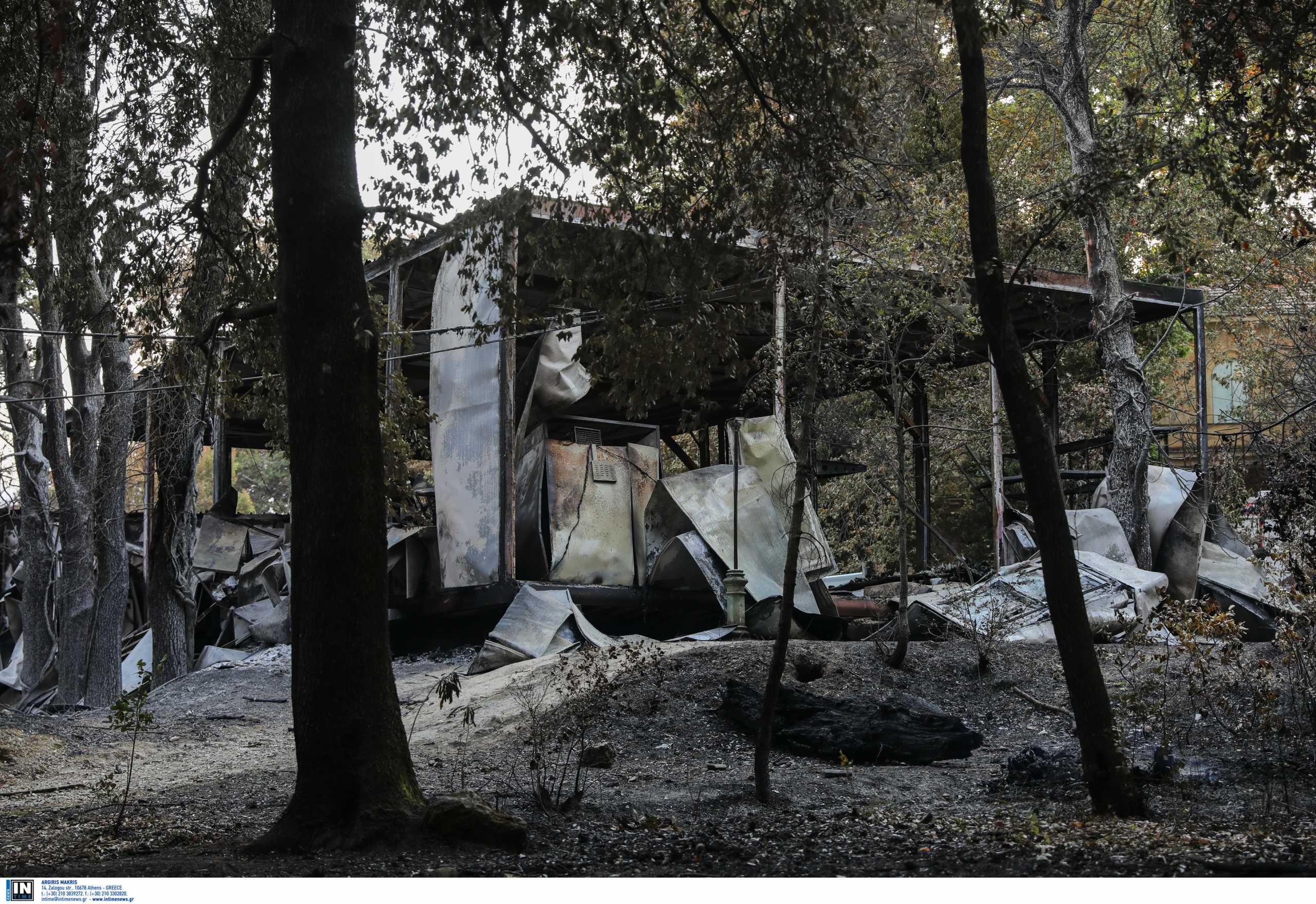 Τατόι: Τεράστια καταστροφή στο κτήμα των Βασιλικών Ανακτόρων