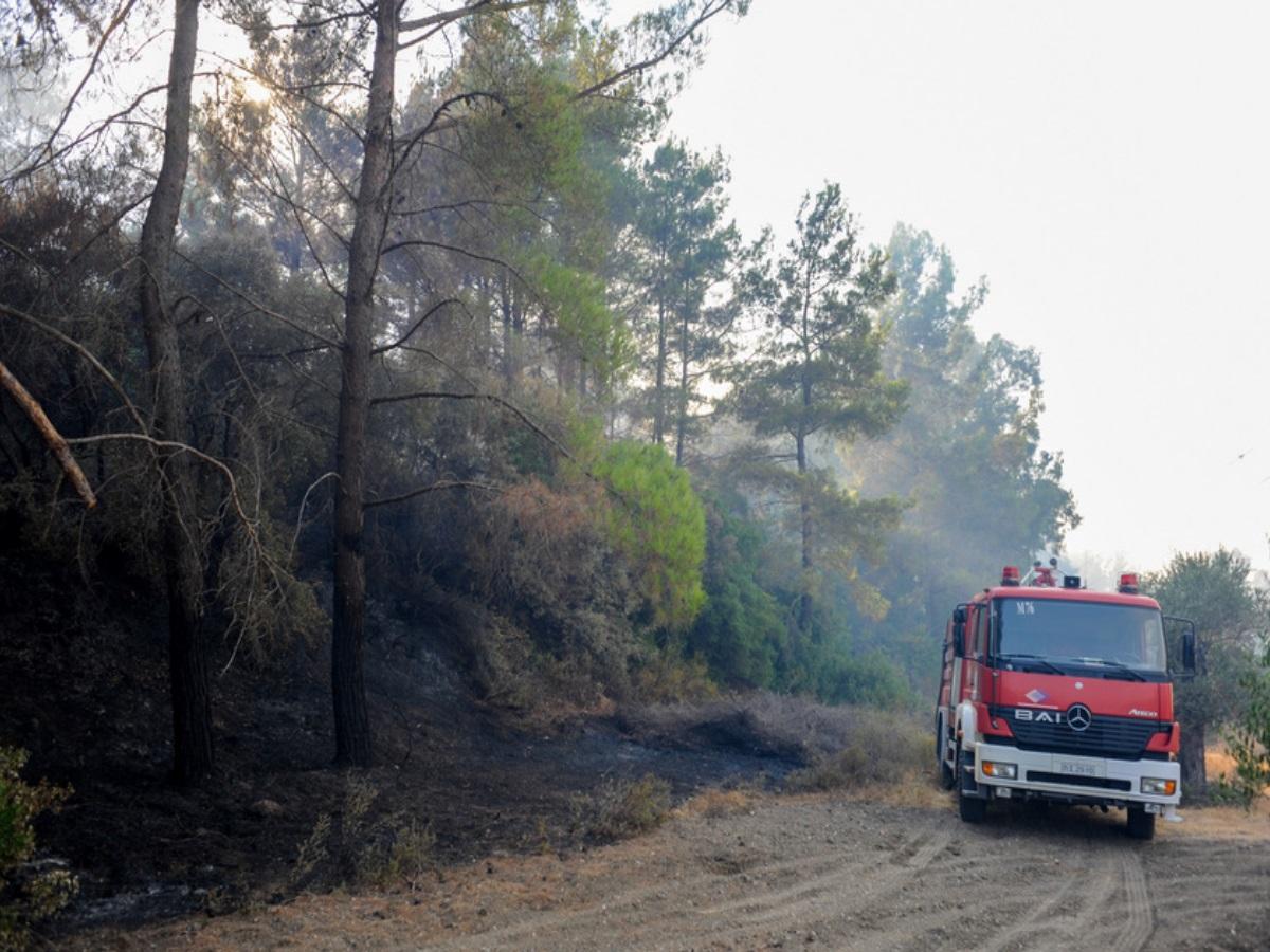 Φωτιά στη Ρόδο: Εκτεταμένες αναζωπυρώσεις από το πρωί