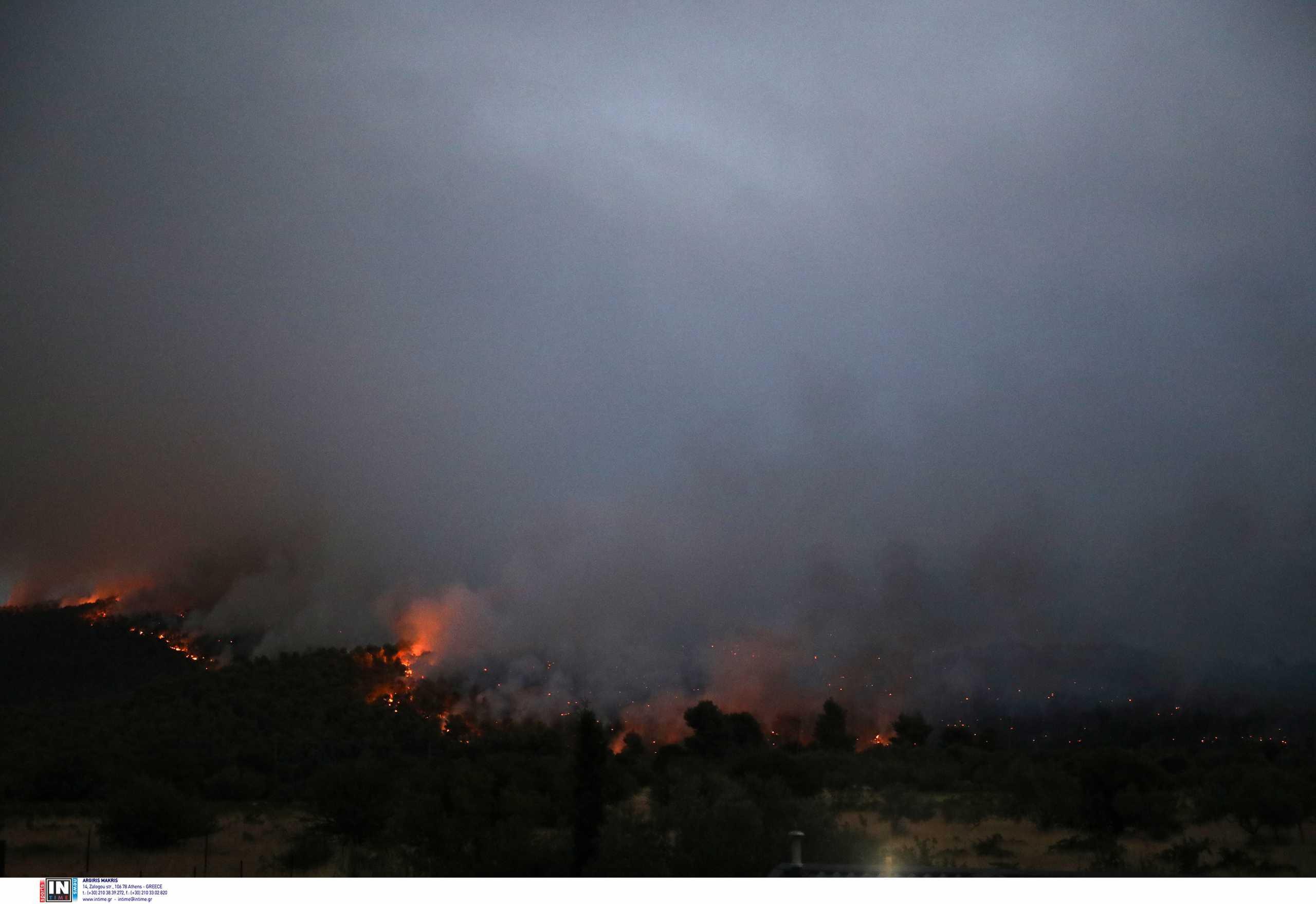 Ομολόγησε ο 14χρονος ότι ευθύνεται για τη φωτιά στο Θεολόγο και άλλες 8 πυρκαγιές
