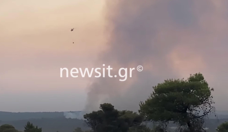 Φωτιά στην Βαρυμπόμπη: Τιτάνια μάχη με τις φλόγες, ανυπολόγιστη η καταστροφή – Καμένα σπίτια, περιουσίες και ζώα