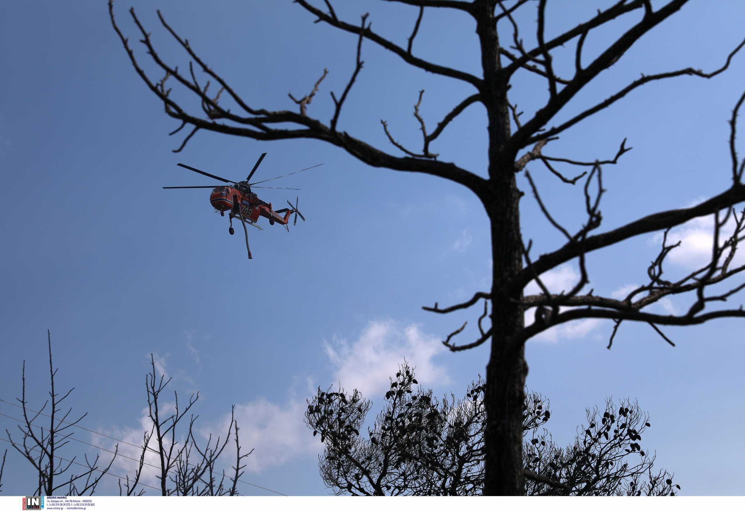 Φωτιά στα Βίλια: Στο νότιο κομμάτι επικεντρωμένες όλες οι δυνάμεις της Πυροσβεστικής από γη και αέρα