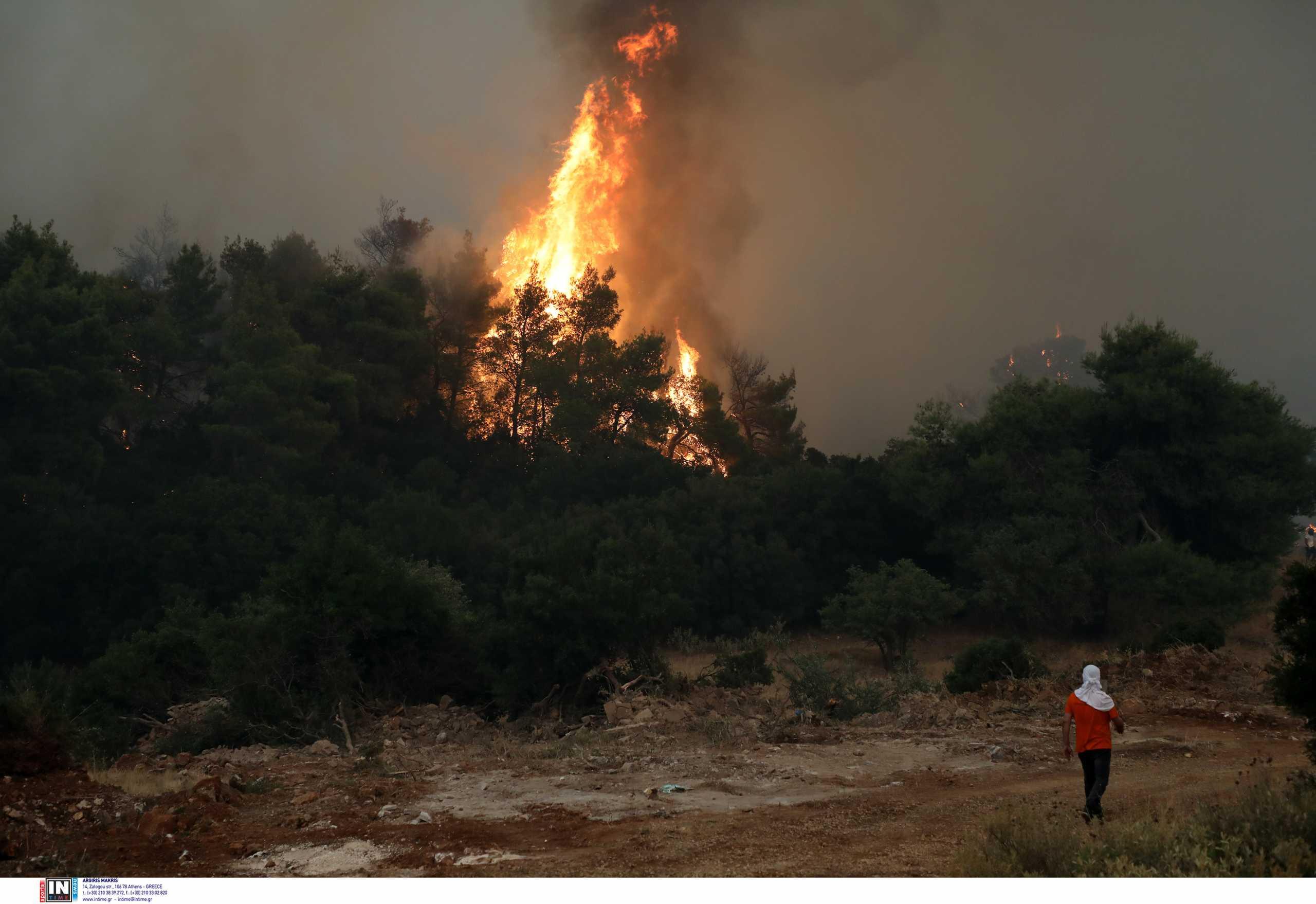 Φωτιά στα Βίλια: Δύσκολη νύχτα μετά την αναζωπύρωση στον Προφήτη Ηλία