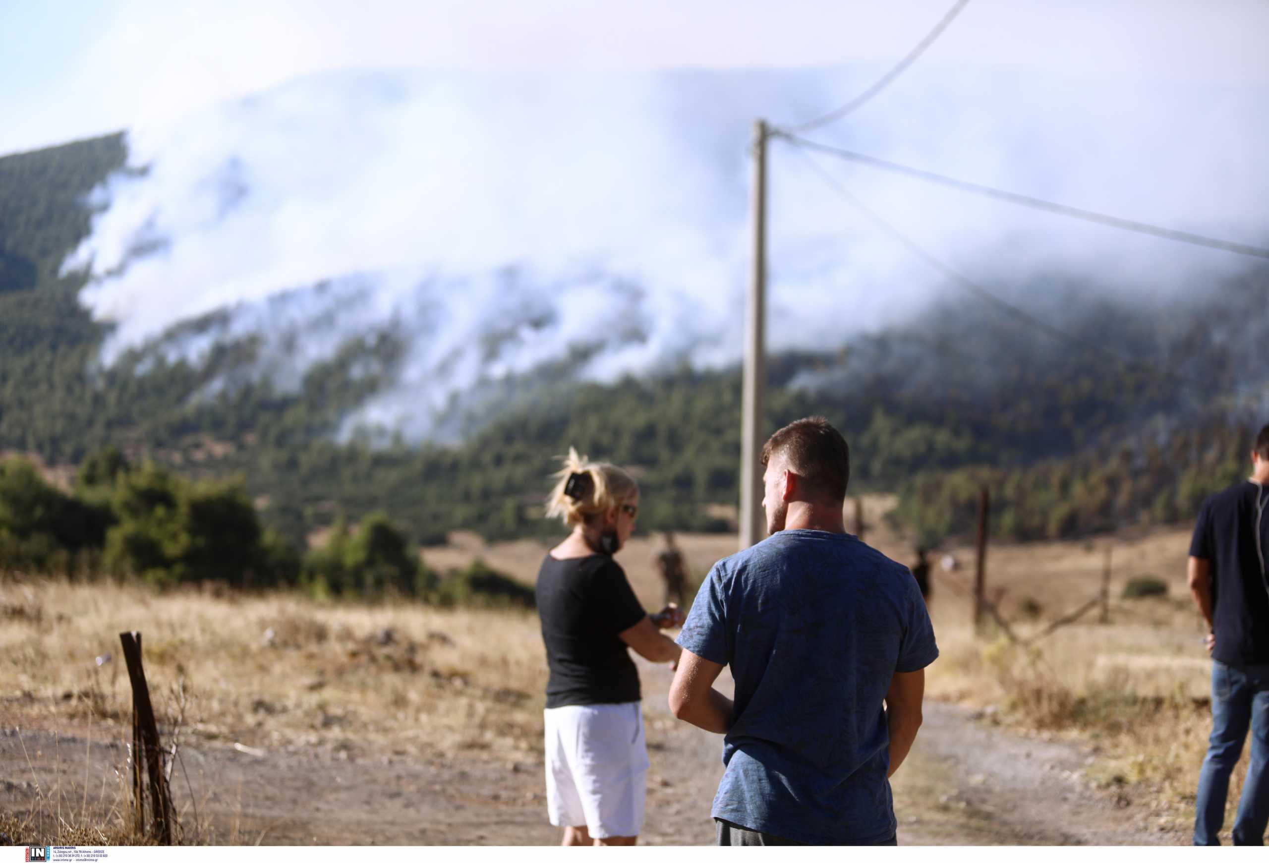 Φωτιά στα Βίλια: Ανεξέλεγκτη η πύρινη λαίλαπα – Νέα εντολή εκκένωσης από το 112
