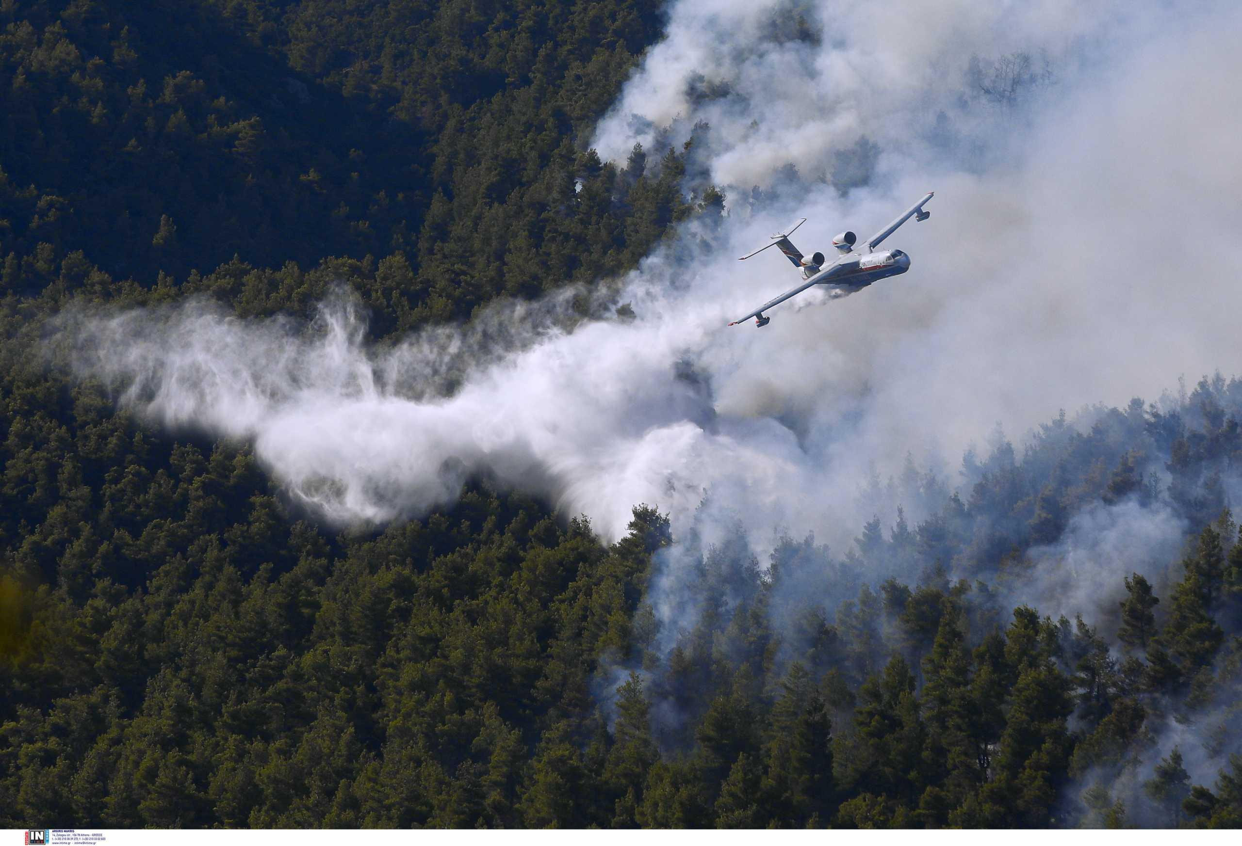 Φωτιά στα Βίλια: Μάχη με τις αναζωπυρώσεις – Καίγεται πυκνό δάσος στο Όρος Πατέρας