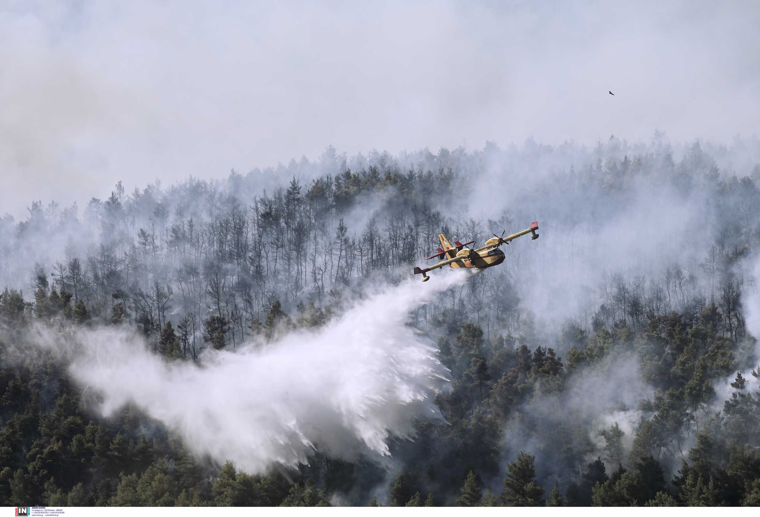 Φωτιά στην Εύβοια: Κερδίζεται η μάχη στο Μετόχι Καρύστου – Οριοθετήθηκε η πυρκαγιά