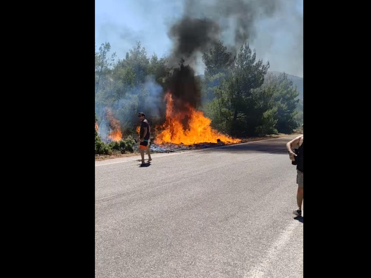 Φωτιά στα Βίλια: Έτσι ξεκίνησε η πυρκαγιά – Βίντεο ντοκουμέντο