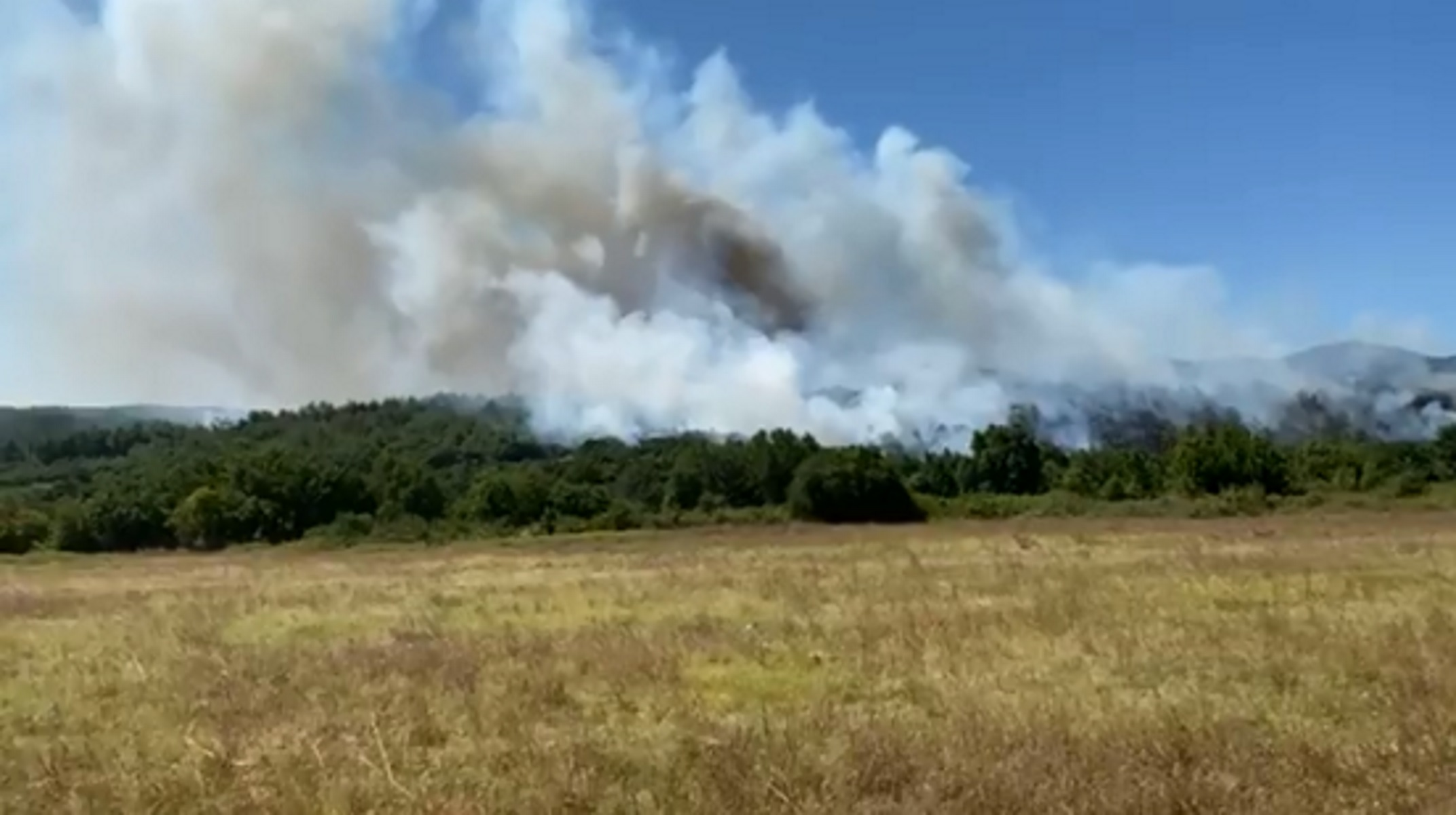 Φωτιά τώρα στην Κομοτηνή – Καίει στο δάσος της Νυμφαίας