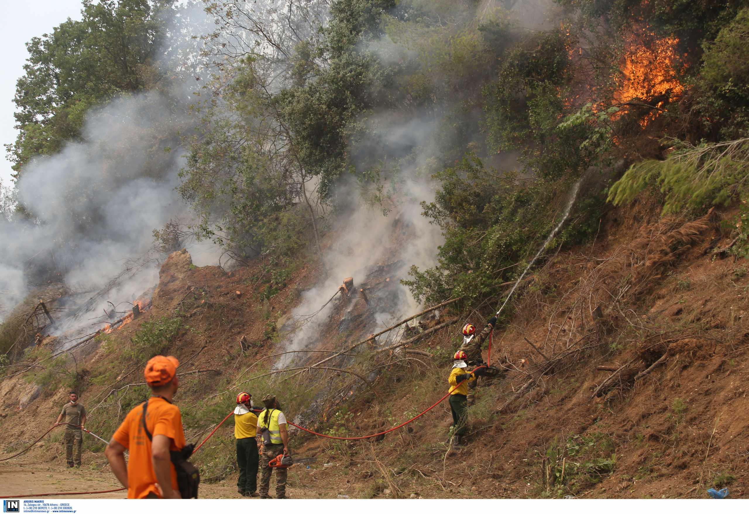 Εκκλήσεις για εναέρια μέσα στην Εύβοια – Επιστρέφει η φωτιά να κάψει ό,τι απέμεινε