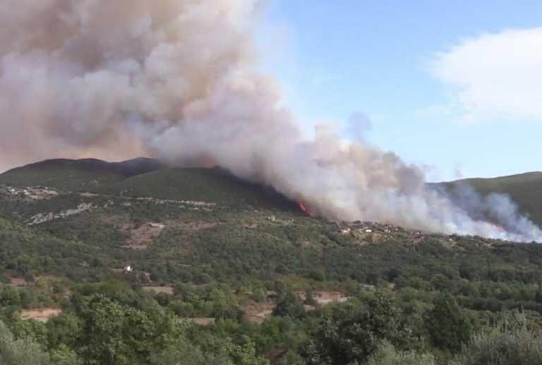 Φωτιά στη Μεγαλόπολη: Τραυματίστηκε αντιδήμαρχος – «Μας έκλεισε η φωτιά»
