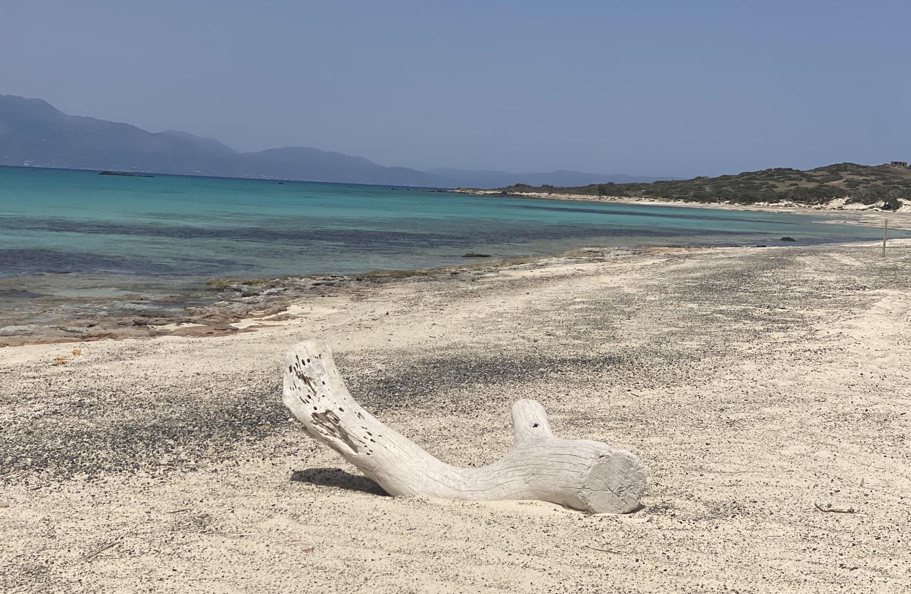Νήσος Χρυσή: Αυστηρό καθεστώς προστασίας με εντολή του Κυριάκου Μητσοτάκη