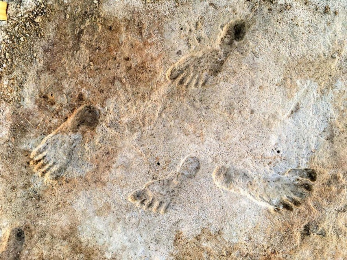 Αμερική: Εντοπίστηκαν ανθρώπινες πατημασιές 23.000 ετών – Νέα δεδομένα για τα μεταναστευτικά κύματα