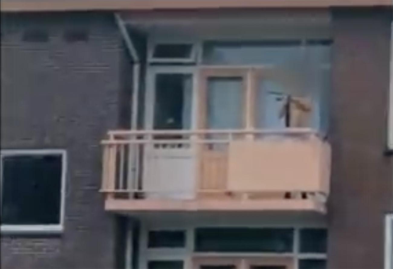 Επίθεση με βαλλίστρα στην Ολλανδία
