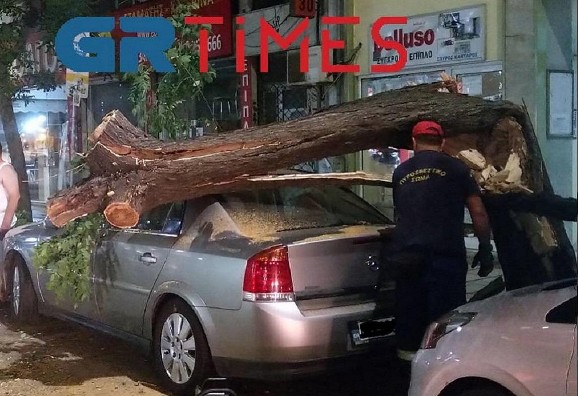 Θεσσαλονίκη: Δέντρο καταπλάκωσε αυτοκίνητο στο κέντρο της πόλης