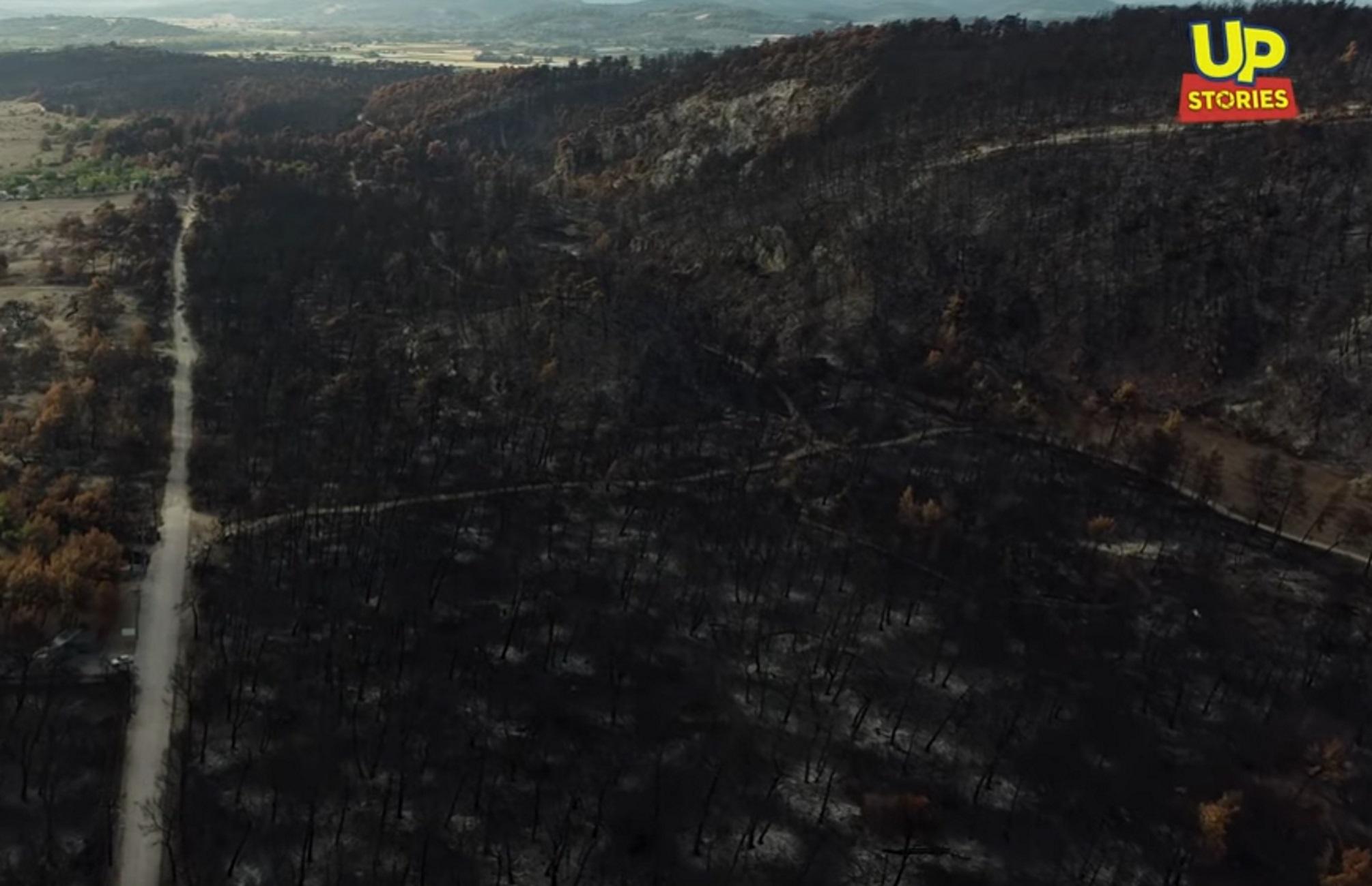 Εύβοια: Δείτε τις αποκαρδιωτικές εικόνες από drone ένα μήνα μετά την καταστροφική φωτιά