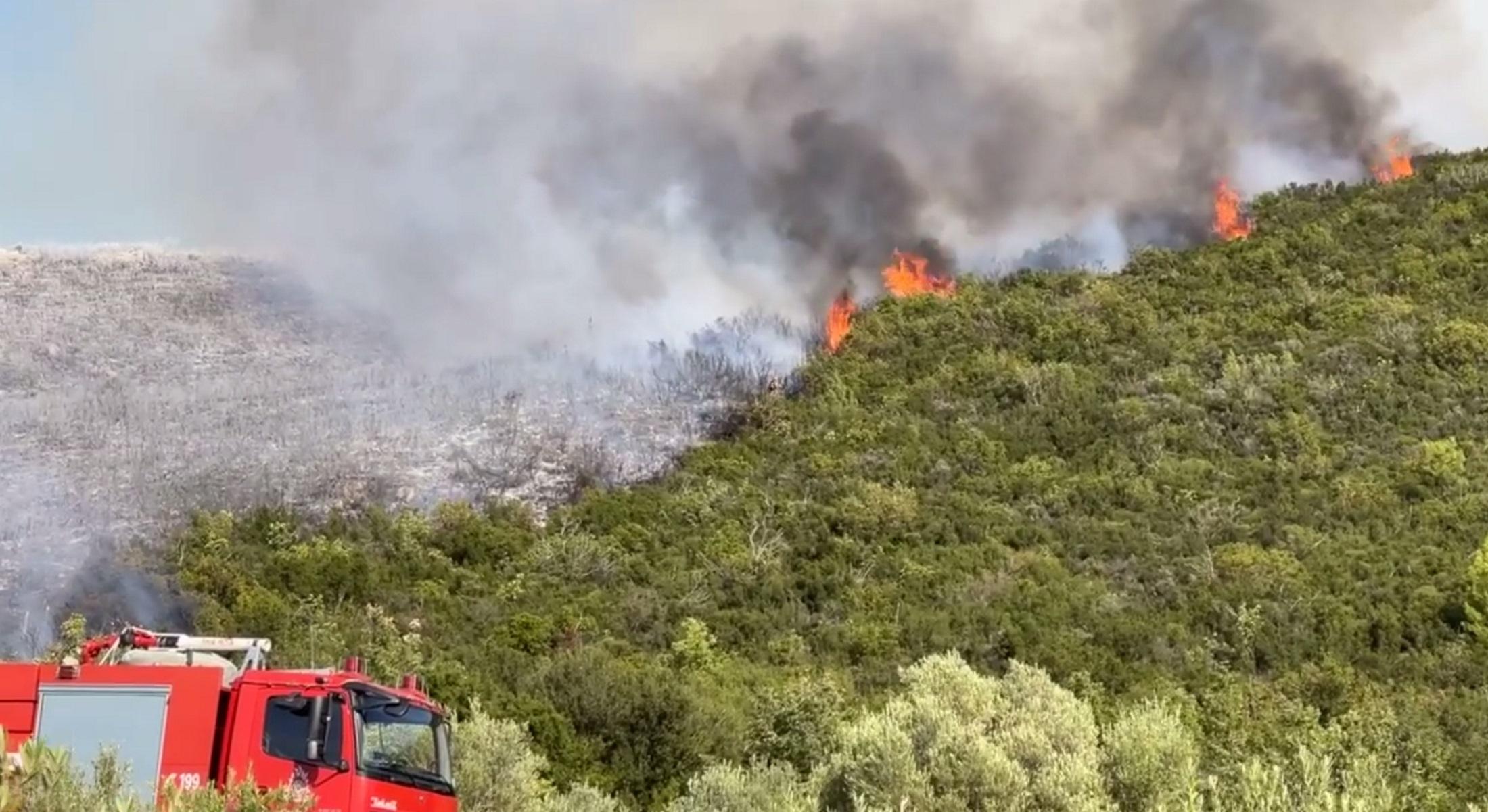 Φωτιά στη Μεγαλόπολη – Συναγερμός στην πυροσβεστική