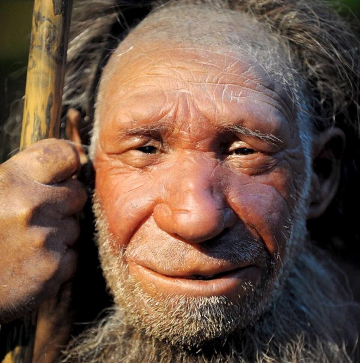 Μια μετάλλαξη στο DNA άφησε τους ανθρώπους χωρίς ουρές