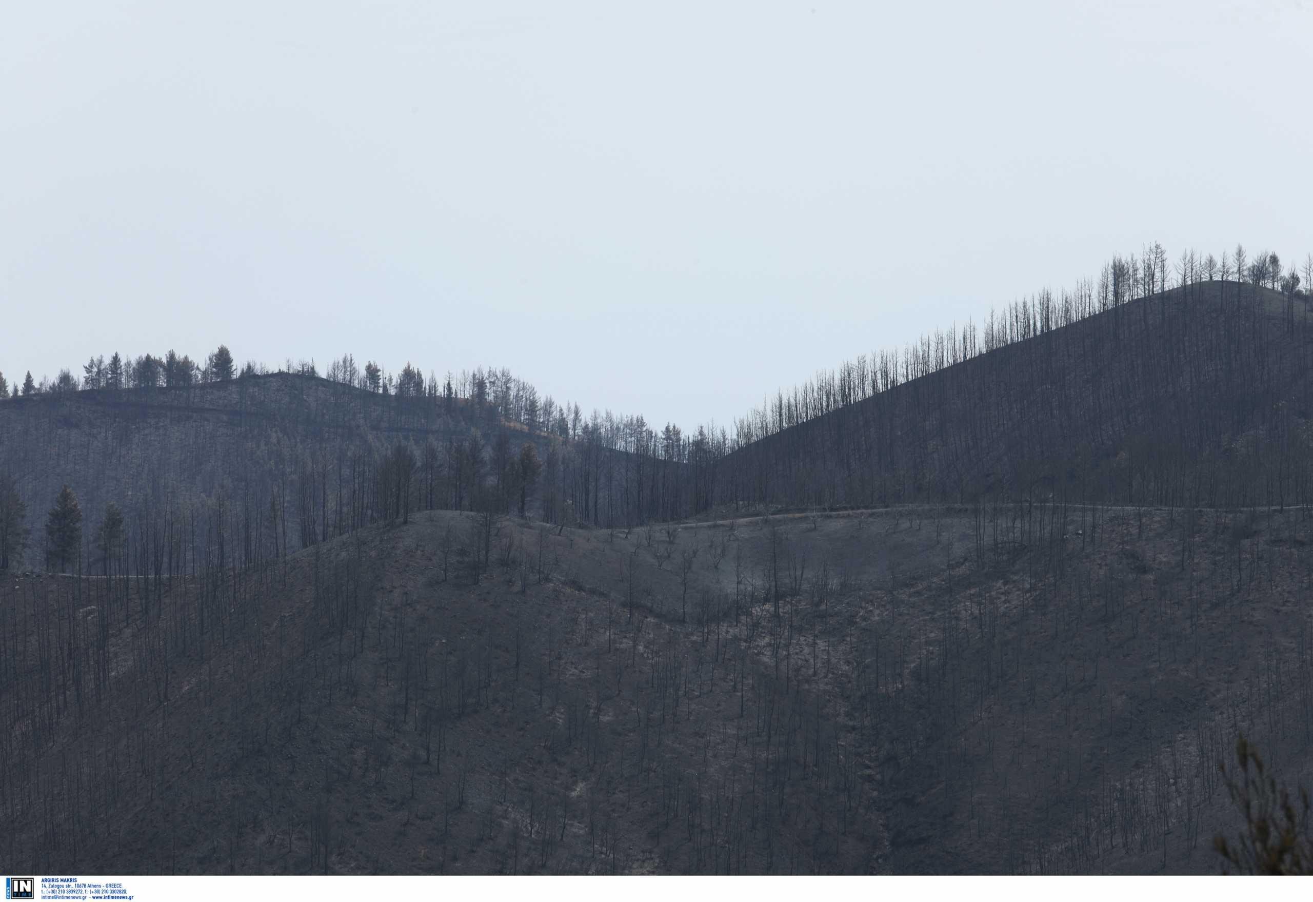 Βόρεια Εύβοια: Σε 10 πυλώνες το σχέδιο αποκατάστασης για τις πυρόπληκτες περιοχές