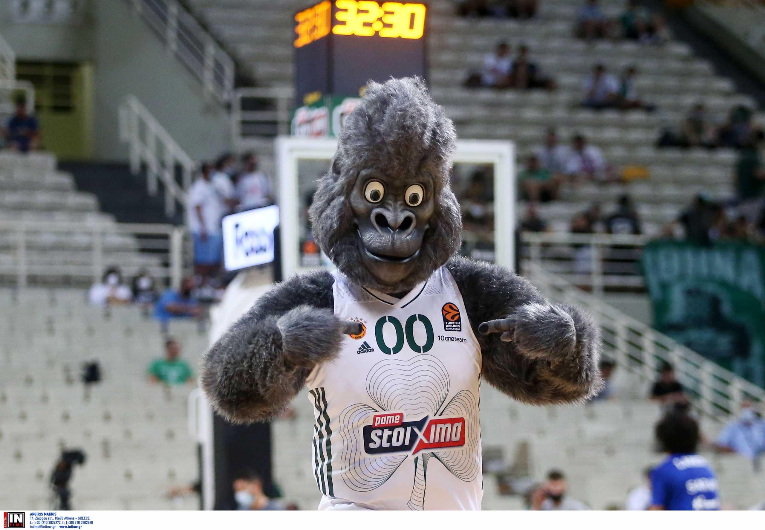 Η ΚΑΕ Παναθηναϊκός παρουσίασε τον «Green Kong»