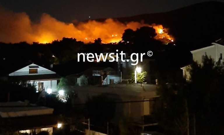 Φωτιά στη Νέα Μάκρη: Ολονύχτια μάχη με τις φλόγες σε Λιβίσι και Άγιο Εφραίμ - «Έχουν καεί σπίτια»