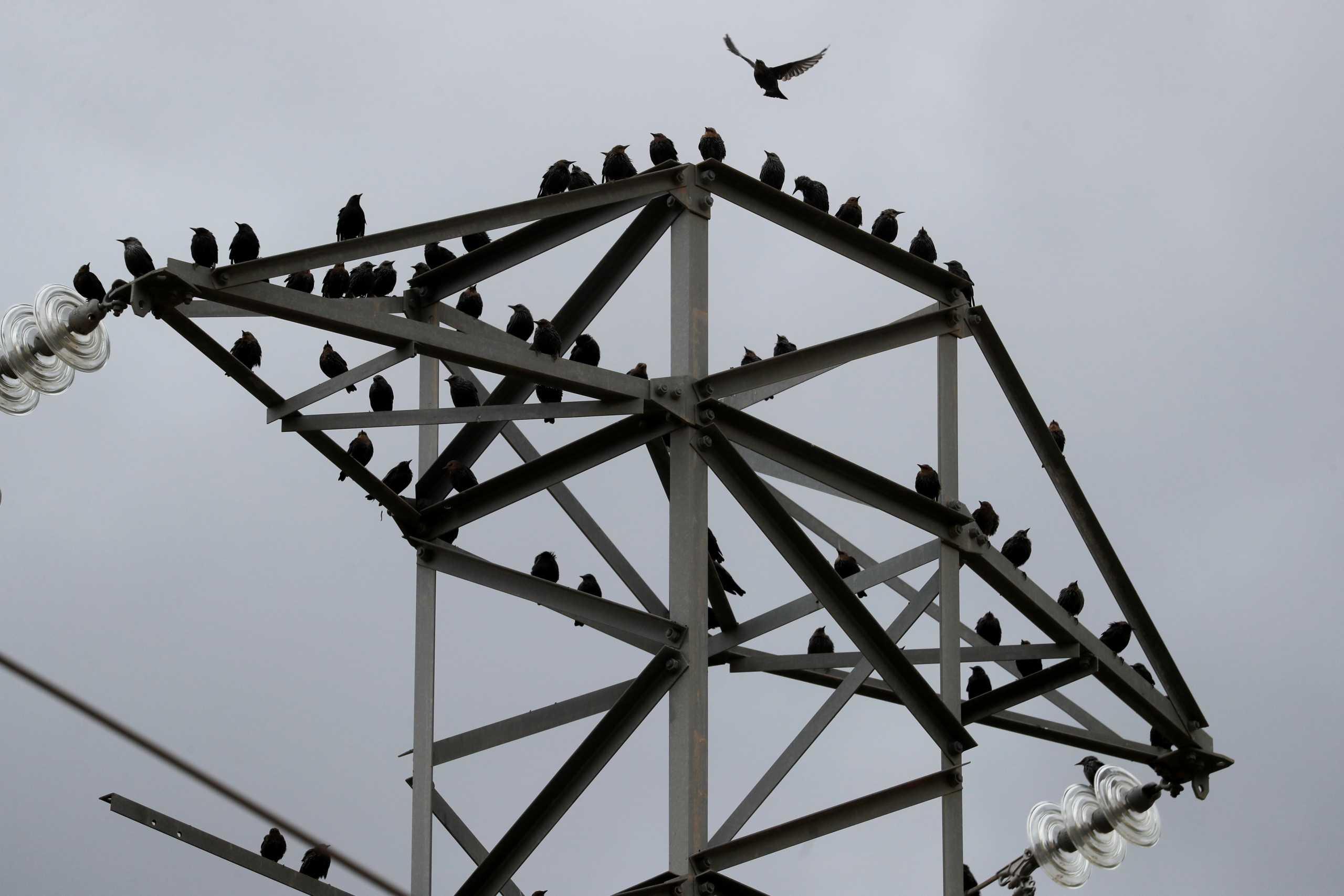 Ισπανία: Μέτρα για «φρένο» στην αύξηση της τιμής του ηλεκτρικού ρεύματος