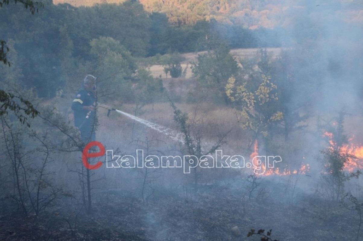 Τρίκαλα: Φωτιά στο Τριφύλλι Καλαμπάκας – Ισχυροί άνεμοι στην περιοχή