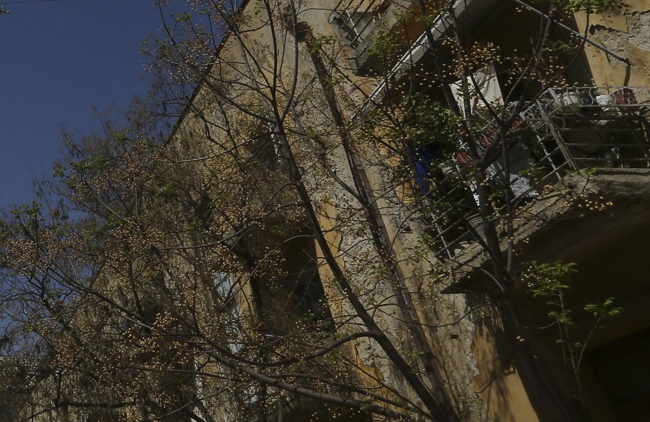 Ηλιούπολη: Οι διαρρήκτες σκαρφάλωσαν από την υδρορροή – Τους έπιασαν με τα κλοπιμαία